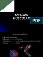 Aula 02_sistema muscular_parte 1 (1)