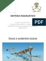 AULA ANATOMIA - esqueleto apendicular