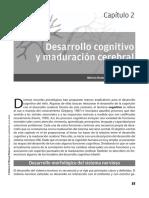 Neuropsicologia_del_Desarrollo_Infantil (7)