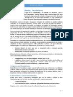 0apuntes_de_historia_del_derecho-patatabrava
