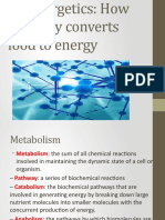 8. Bioenergetics (How the Body Converts Food to Energy).pptx