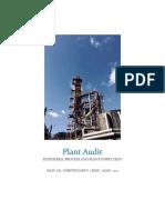 Audit Report IPPI.docx