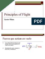 principios de vuelo 2