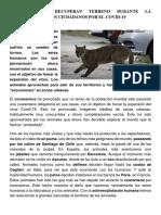 Noticia. sesión 11.pdf