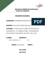 INVESTIGACIÓN SOBRE LOS PROCESOS DE TRASFERENCIA EN BIORREACTORES (TRANSFERENCIA EN CANTIDAD Y MOVIMIENTO, DE MASA Y DE CALOR).