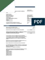 PAPELES DE TRABAJO Y ANUAL proceso (1)