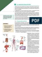 TROZO DE TEXTO FUNCION DE NUTRICIÓN PAEA 13 MAYO (1)