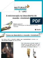 A_microscopia_na_descoberta_do_mundo_«invisível»