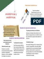 Cartel de Reacciones Endotermicas y Exotermicas
