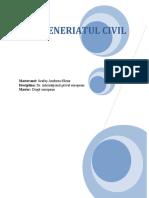 Parteneriatul civil