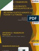 4 ORTODONCIA Y REABSORCIÓN RADICULAR(paula, andres)
