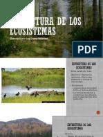 Estructura de los ecosistemas.pdf