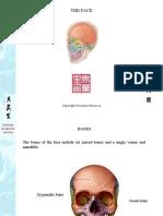 face.pdf
