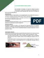 Tema 4. Glaucoma.pdf