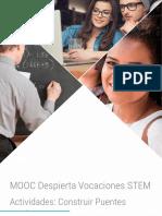 MOOC DVSTEM_Mod5_Puentes