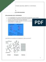 guia biomoleculas foro (1)