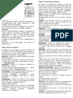 Figuras de linguagem teoria.doc