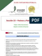 4. SECCION 22 - Pasivos y Patrimonio