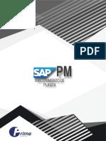 SAP PM PRIME INSTITUTE.pdf