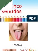 POWER POINT 5 SENTIDOS