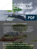CALIDAD AMBIENTAL, CONTAMINACIÓN Y DESARROLLO SOSTENIBLE (1)