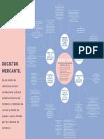 MAPA MENTAL REGISTRO MERCANTIL