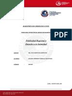TESIS PUBLICIDAD REGISTRAL Y DERECHO A LA INTIMIDAD