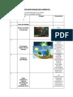 GUION RESPONSABILIDAD AMBIENTAL (5).docx