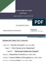 Declaracion Unilateral de Voluntad y Titulos Valores - Exclusivo para Cátedra Derecho Comercial II FADECS - UNCO  por Dr. Jorge Arturo Gomez
