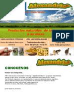 PAGINA WEB-ENTREGA 1