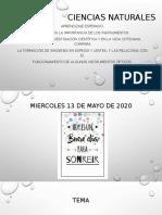 13_MIERCOLES_DE_MAYO_CIENCIAS NATURALES