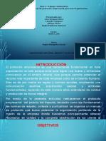 trabajo_colaborativo_fase3