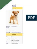 Historia Chihuahua