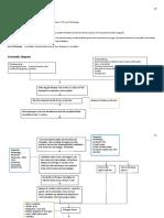 pathophysiology dengue 2