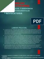 Expo Derecho Constitucional