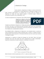 Apostila 10- Tráfego Urbano-Engenharia e Gestão de Tráfego-UFMG