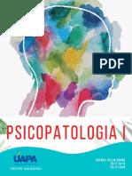 REVISTA PSICOPATOLOGIA