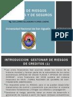 EXPO 1 INTRODUCCION AL RIESGO