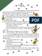 Noi albinele C Gruia