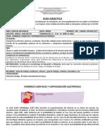 GUIA 1 - NUMEROS CUANTICOS Y DISTRIBUCION ELECTRONICA