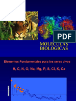 Flujo Informacion genetica