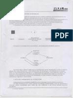 PERCEPCION. Elena Nieto 1.pdf