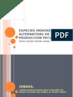 ESPECIES MENORES COMO ALTERNATIVAS DE LA PRODUCCION PECUARIA CERDOS