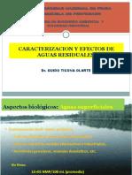 7 CARACTERIZACION Y EFECTOS DE LAS AARR.ppt