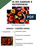 MCD-Celulas_do_Sangue_e_Hematopoese_MED2009_arquivo (1).ppt