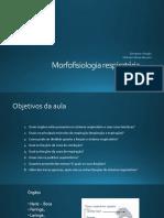 Morfofisiologia respiratória 4
