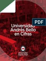 Unab en Cifras 2019