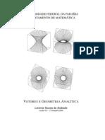 Vetores e Geometria Anal-Tica