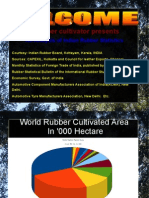 Analysis of Rubber Statistics
