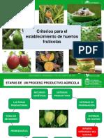 Criterios para establecimientos de huertos fruticolas